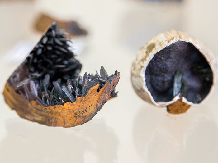 Вивианит (керченит).Черноморский рудник, Крымский полуостров
