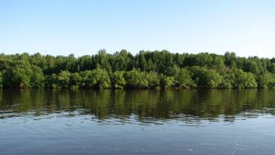 Photo of Усть-Калья – Маслово: природа, хозяйство, люди